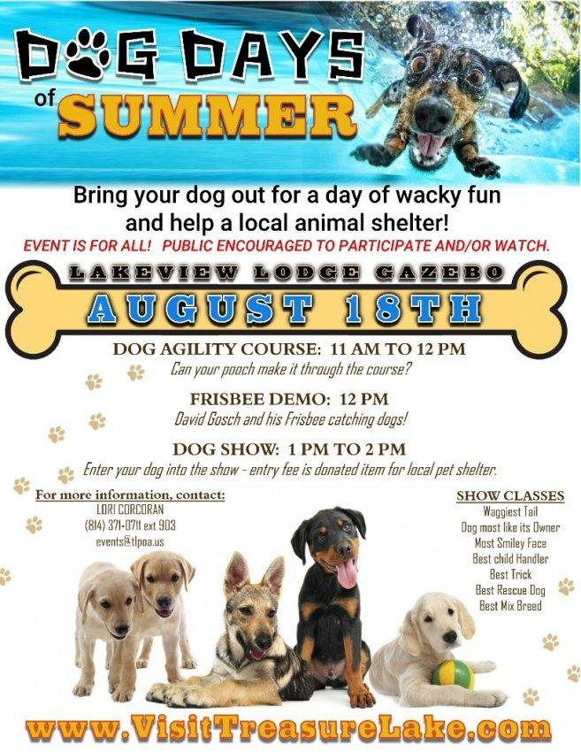 Dog Days of Summer-FB-2.jpg