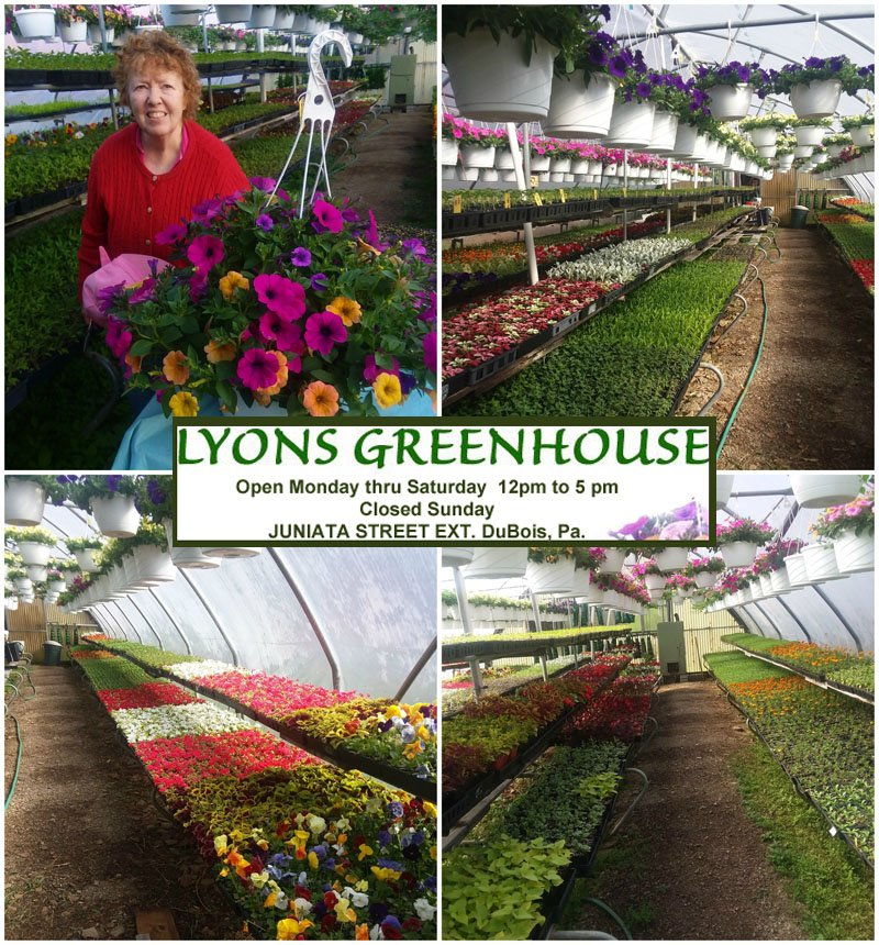Lyons Greenhouse Is Now Open!